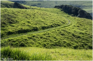 Gerringong-Kiama-Coastal-walk