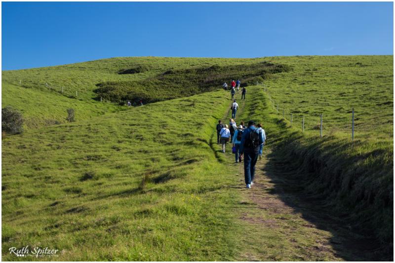 2015.06.14 - Gerringong-Kiama walk (82) - Webwmb