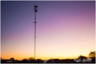 Sunrise-Curtin-Springs