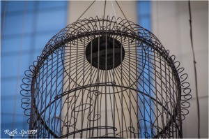 Angel-Place-Forgotten-Songs-Bird-Cages