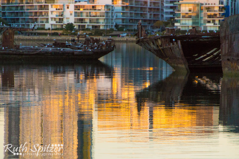 Homebush-Bay-Shipwrecks-Ruth-Spitzer
