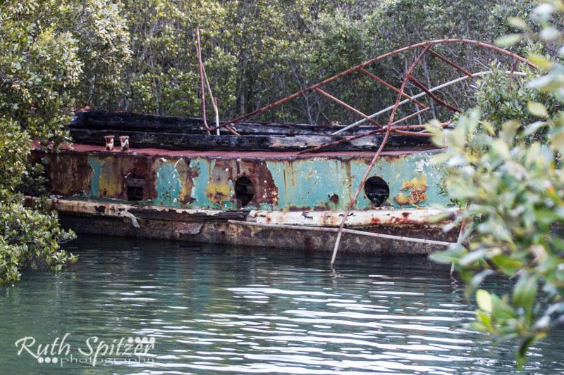 Homebush-Bay-Shipwrecks-Ruth-Spitzer-SS-Karingi