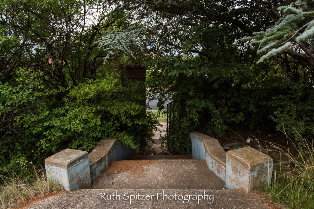 Front Steps of the Abandoned St Johns Orphanage in Goulburn. Image by Ruth Spitzer