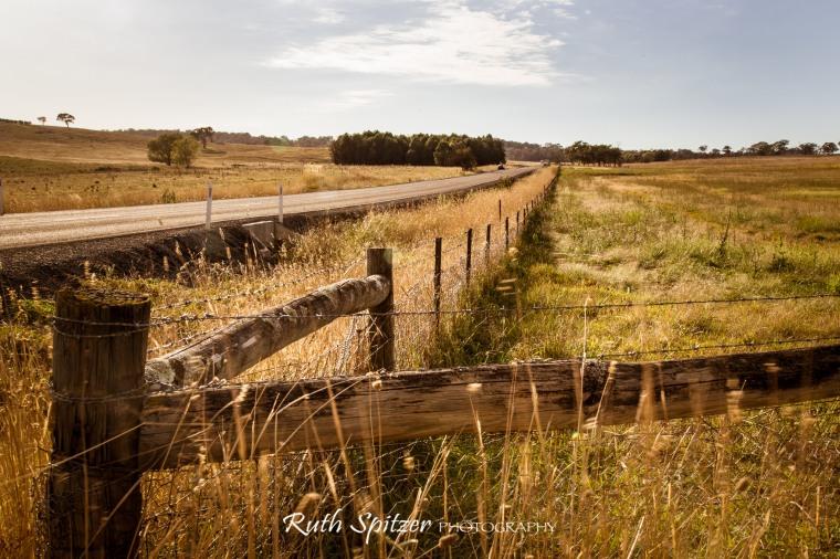 Belconnen-Canberra-countryside