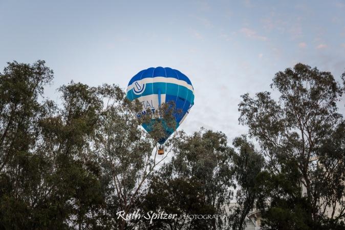 hot-air-balloon-spectacular-2016-canberra