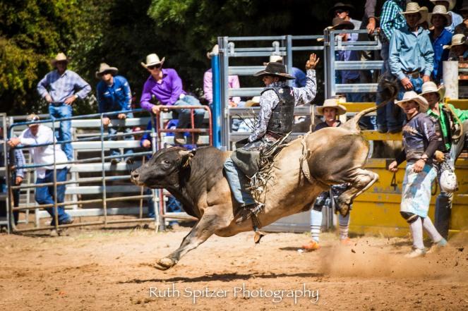 2016-Taralga-Rodeo-NSW-Australia