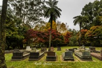 Graves-and-Autumn-Leaves-Mount-Wilson-Blue-Mountains-NSW