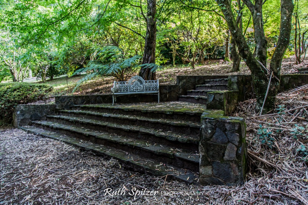 Breenhold-Private-Gardens-Mount-Wilson-NSW