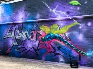Walk The Walls Cronulla Street Art Festival 2019
